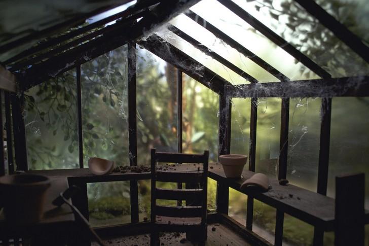 Backyard_Greenhouse