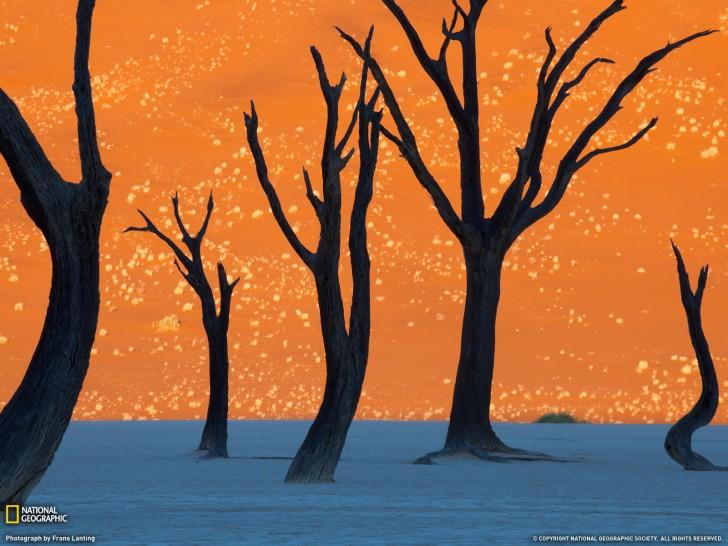 Pomarańczowe wydmy w Sossusvlei, Namibia.