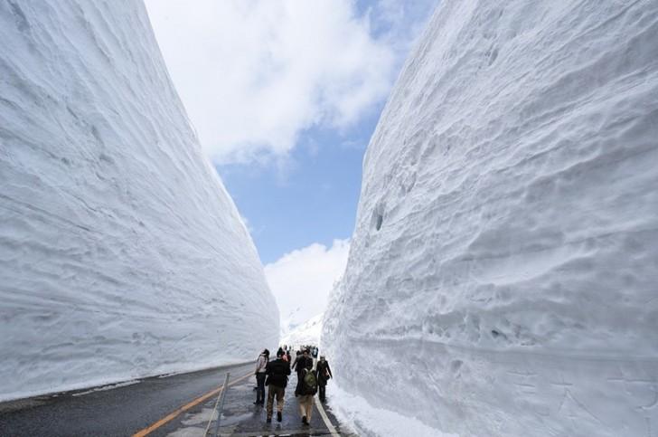 tateyama-kurobe-alpine-route-5