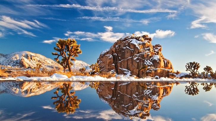 Park Narodowy Joshua Tree, USA