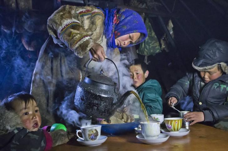 Picie herbaty, półwysep Jamał