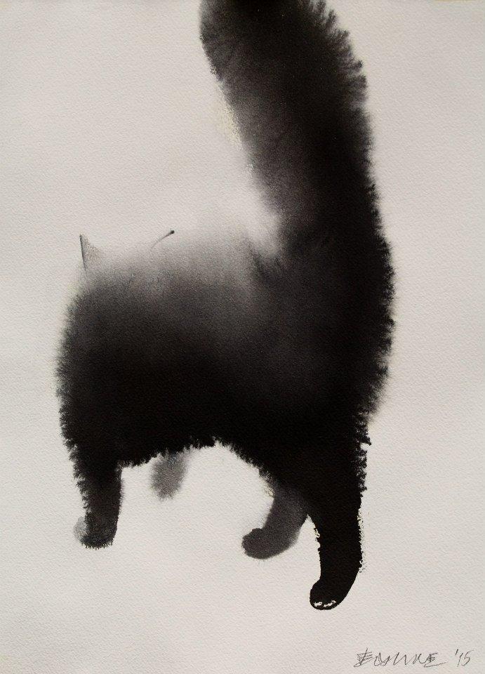 cats0