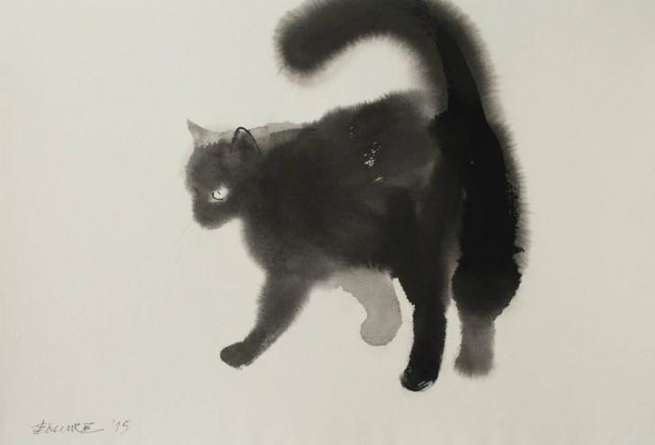 cats5