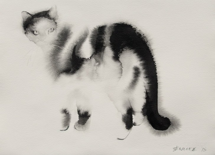 cats7