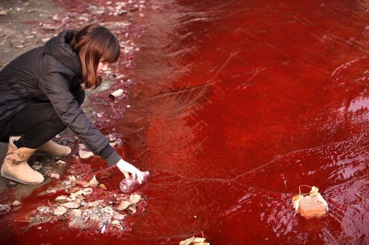 Dziennikarka bierze próbkę zabarwionej na czerwono wody z rzeki Jianhe.