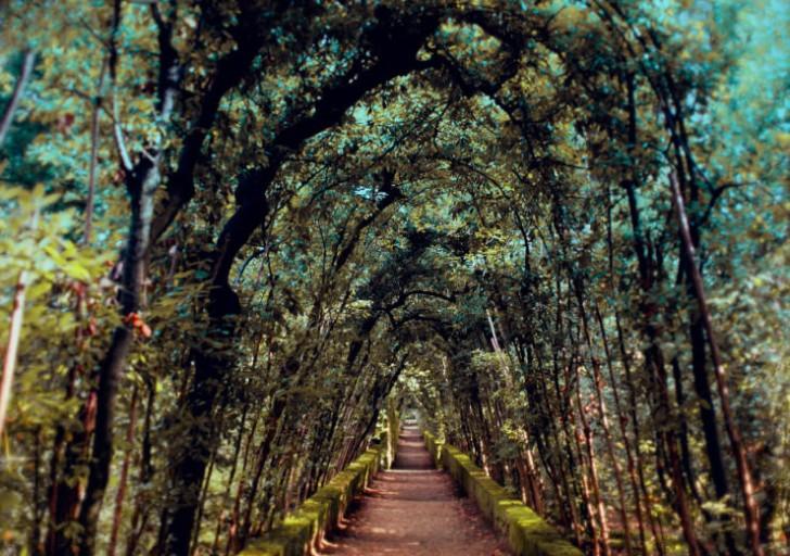 Ogród Boboli, Florencja, Włochy