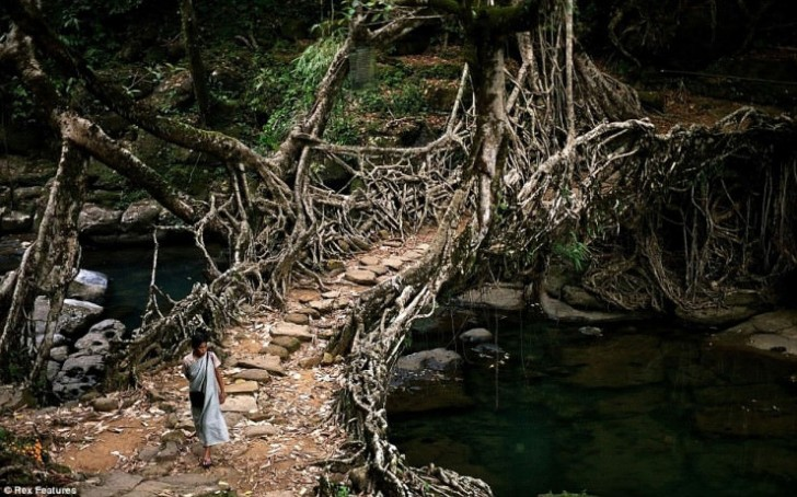 Cherrapunji, Meghalaya, Indie