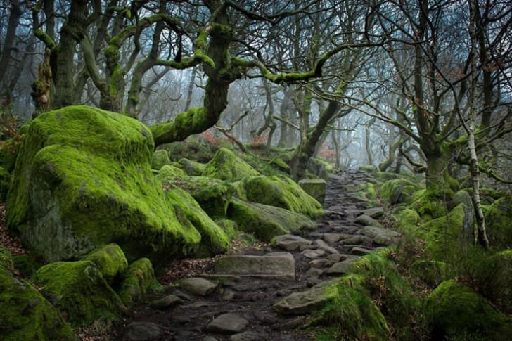 Padley Gorge, Wielka Brytania