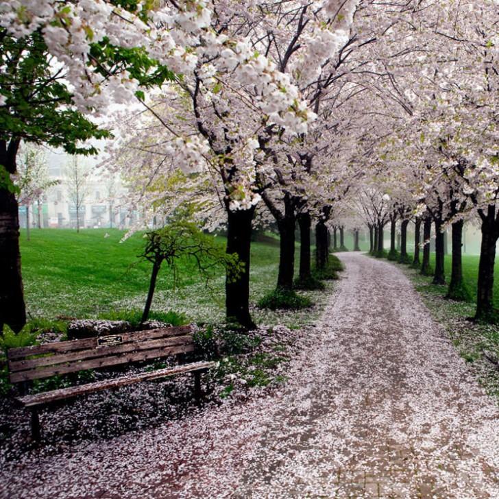 Spencer Smith Park, Burlington, Ontario, Kanada