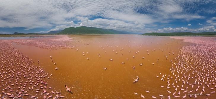 Jezioro Bogoria, Kenia
