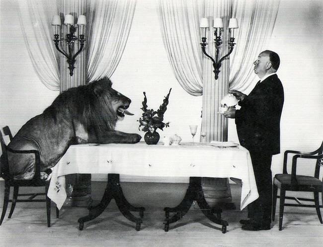 Alfred Hitchcock i lew z czołówki wytwórni MGM przy wspólnym posiłku.