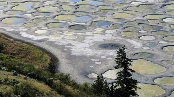 Spotted Lake, Kanada