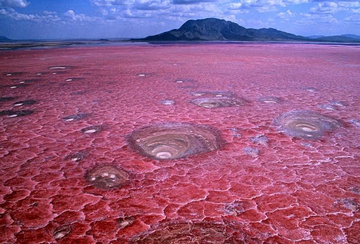 Jezioro Natron, Tanzania