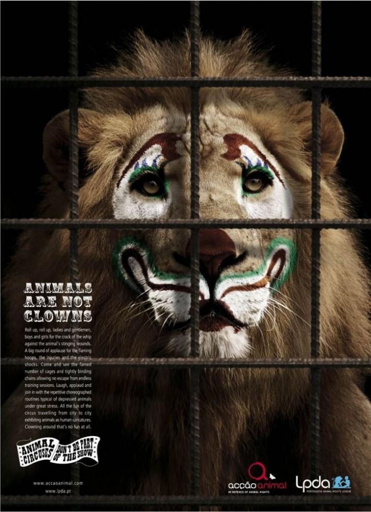 animals-742x1024
