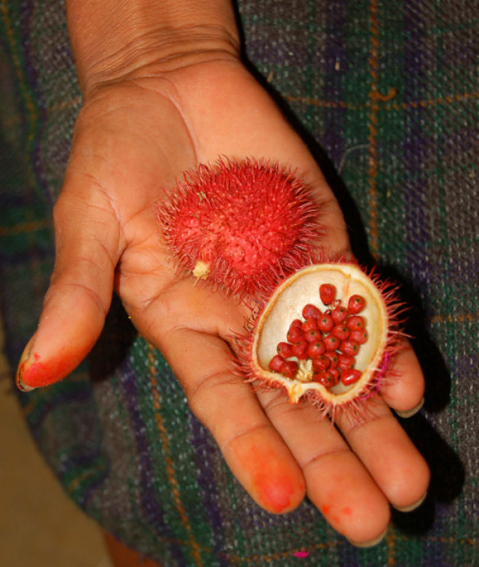 20-of-the-Worlds-Weirdest-Natural-Foods-Fruits-Vegetables1__700
