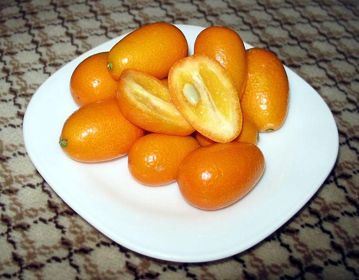 769px-Kumquat-Crosssection1__700