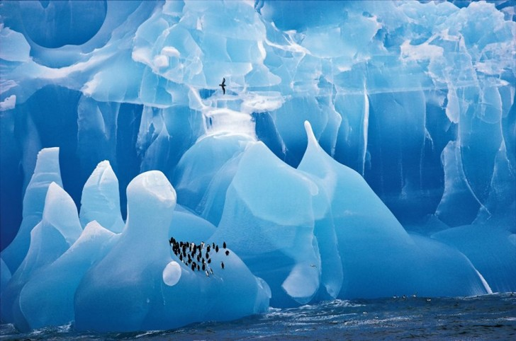 Magnificent-Blue-Iceberg-South-Sandwich-Islands-in-Antartica
