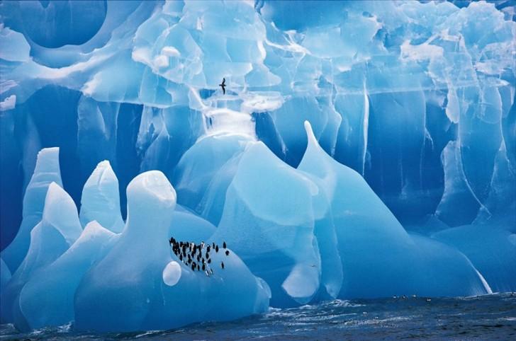 Magnificent-Blue-Iceberg-South-Sandwich-Islands-in-Antartica