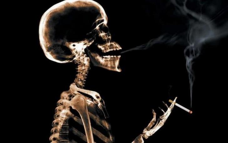 Smoking-Cannibus-Shotbox1