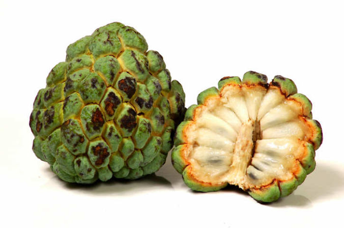 custard-apple-1__700