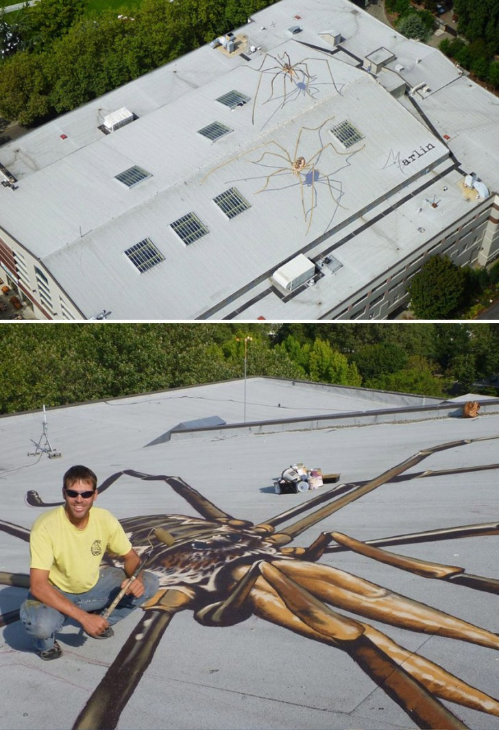 roofspiders