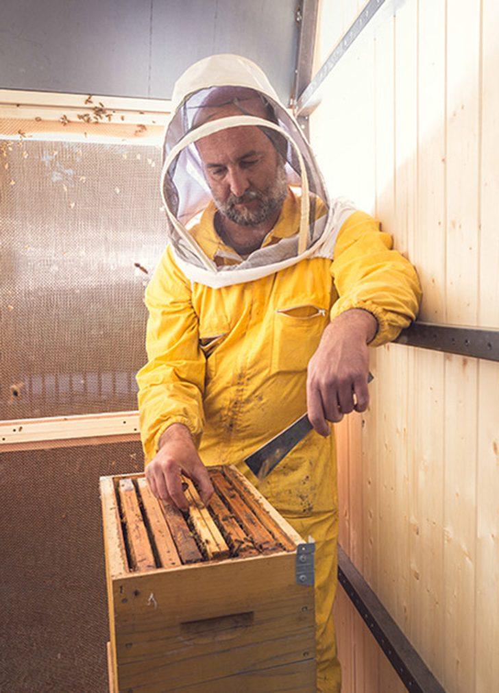 Honey-Factory-By-Francesco-Faccin_dezeen_468_11