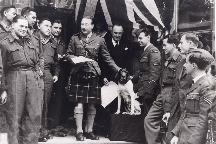 Judy_Govuk_-_Prisoner_of_War_81A_Medan_receiving_her_PDSA_Dickin_Medal_from_Viscount_Tarbat__President_of_the_Returned_Prisoner_of_War_Association_-_London_May_1946