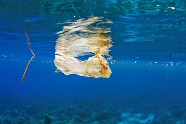 You Will Want To Recycle Everything After Seeing These Photos! - Plastic Bag Floating In The Sea Off The Philippines