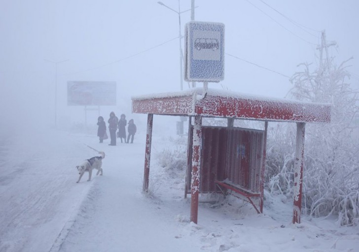 coldest-city-bus-stop