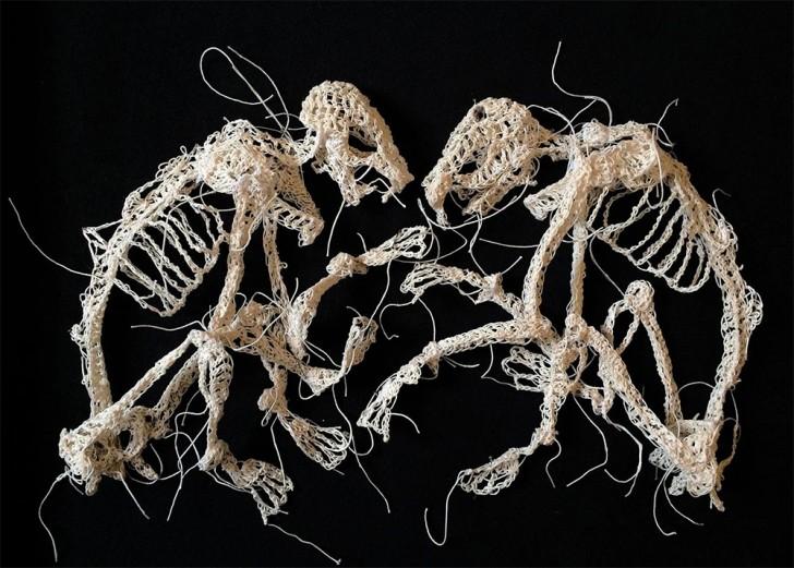 stringanimalskeletons