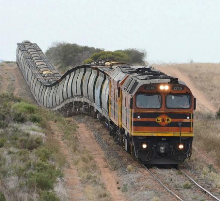 Pociągowa stonoga - Genesee & Wyoming 2216 w Australii