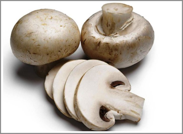www.tirupatibalajiagroproducts.com-mushroom_slice_large