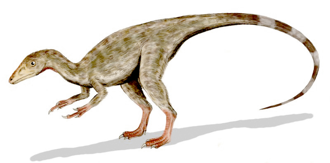 5-myths-about-dinosaurs-debunked-15929