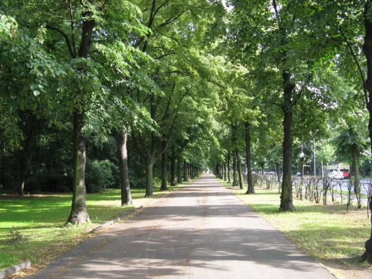 greenest_cities_berlin_park