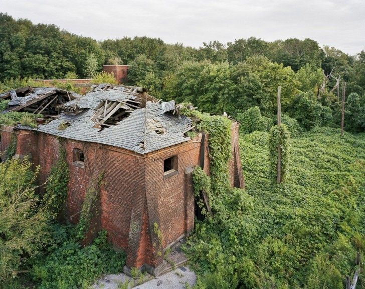north-brother-island-shows-what-happens-to-a-the-world-abandoned-by-humanity