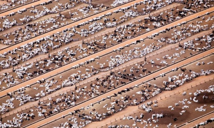 powerful-photos-of-overpopulation-and-overconsumption-83106-960x576