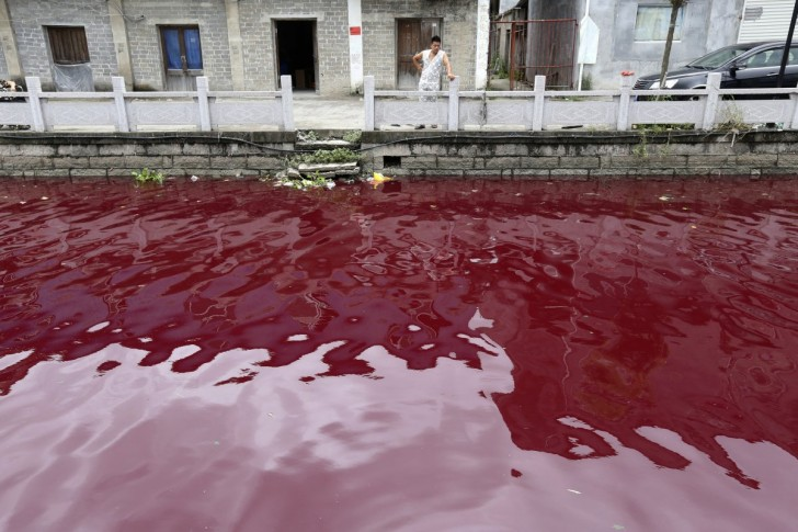 residents-of-wenzhou-china-woke-one-july-morning-to-find-that-a-river-had-turned-red-as-blood-due-to-pollution-in-the-area