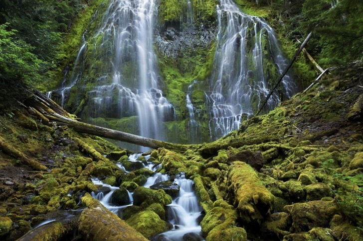 this-is-one-of-the-winners-from-the-smithsonians-wilderness-forever-photography-competition-proxy-falls-cascades-down-to-a-moss-covered-forest-in-the-three-sisters-wilderness-in-oregon-the-t