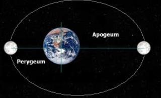 perygeum