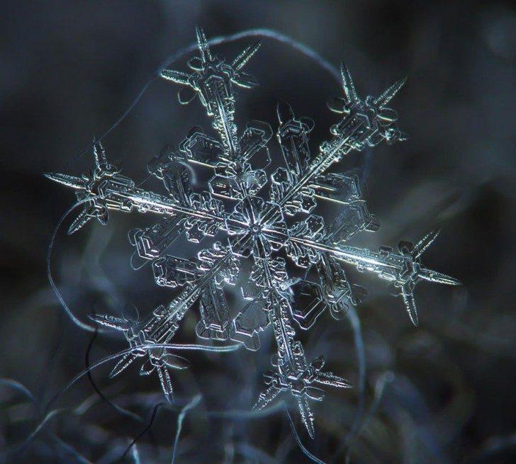 131210.snowflake8