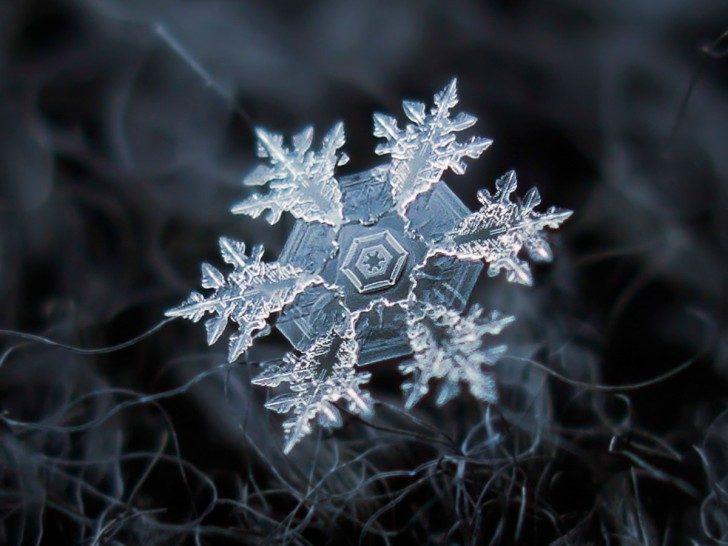 magnified-snowflakes-alexey-kljatov-11