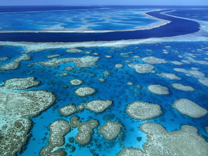 Great-Barrier-Reef-Marine-Park-Queensland-australia