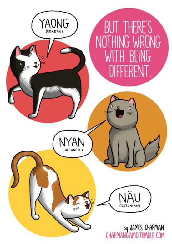 what_noises_do_animals_make_in_other_languages_07