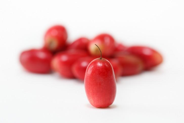 Ten magiczny owoc zmienia kwaśne jedzenie w słodkie