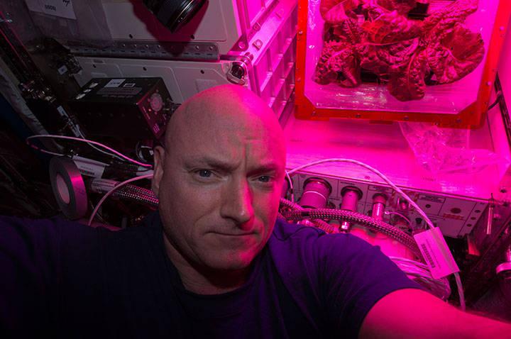 pierwszy-kwiat-w-kosmosie-ciekawe-3a