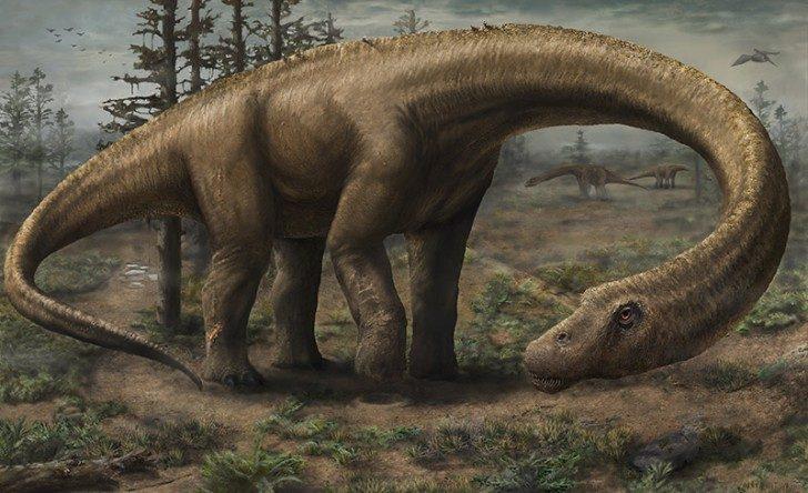 titanosaur-5