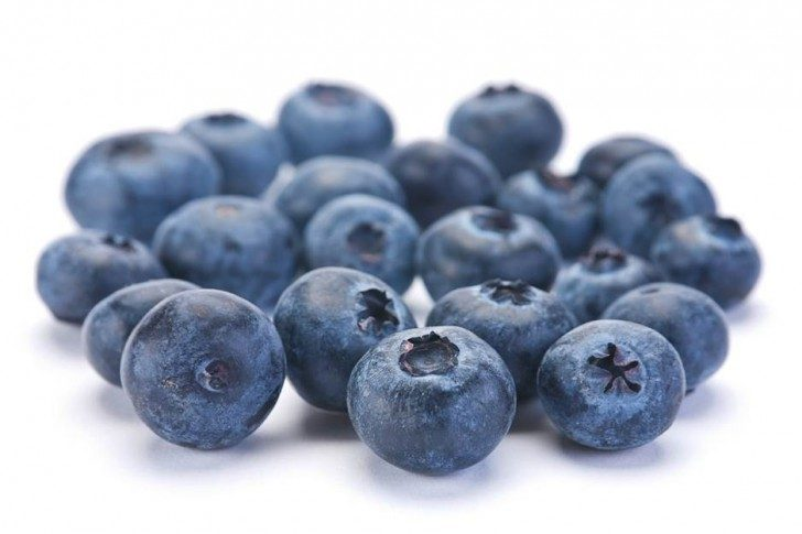 Project-Blueberries