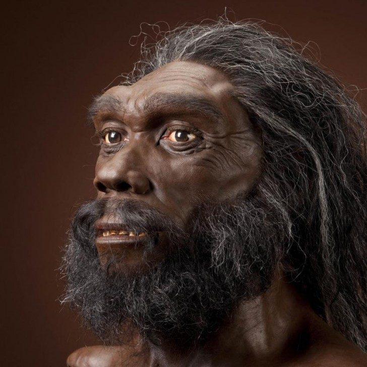 Homo heidelbergensis, rekonstrukcja mężczyzny