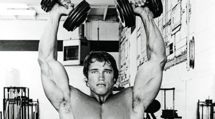 Arnold_4