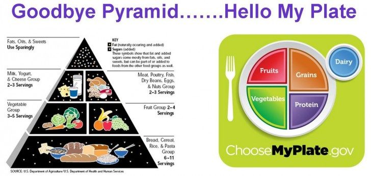 Food-Pyramid-My-Plate1-1